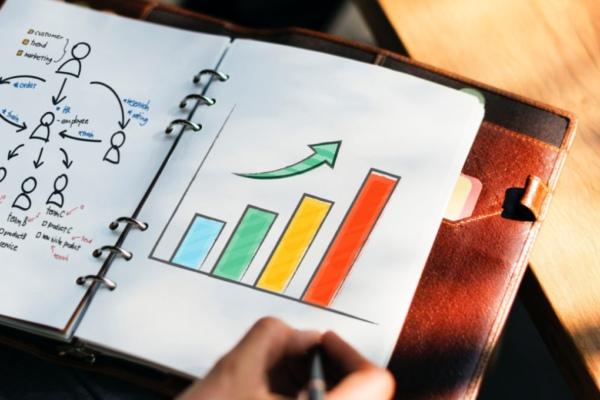 market-analyze-growth-search-book-progress-organize