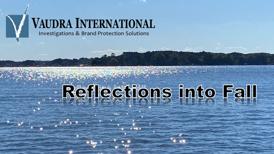 Fall Newsletter – Reflections into Fall